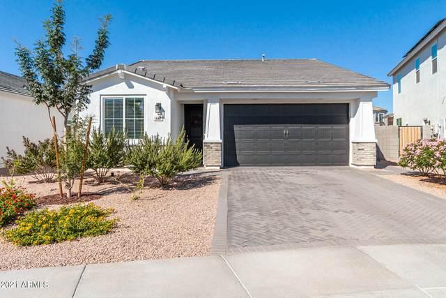 646 E Bamboo Lane, San Tan Valley, AZ 85140 (MLS #6307847) :: The Laughton Team