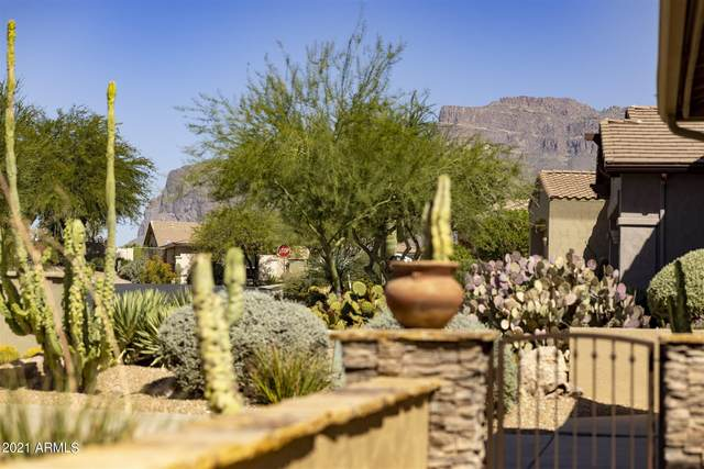 4127 S Tigre Del Mar Drive, Gold Canyon, AZ 85118 (MLS #6307878) :: Klaus Team Real Estate Solutions