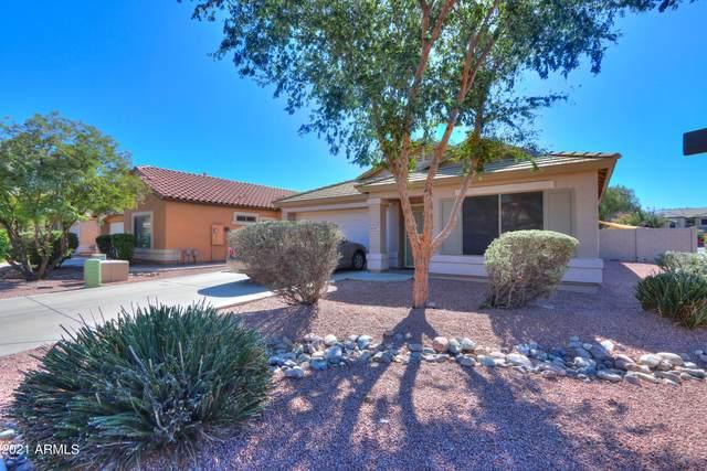 42447 W Colby Drive, Maricopa, AZ 85138 (MLS #6307880) :: Selling AZ Homes Team