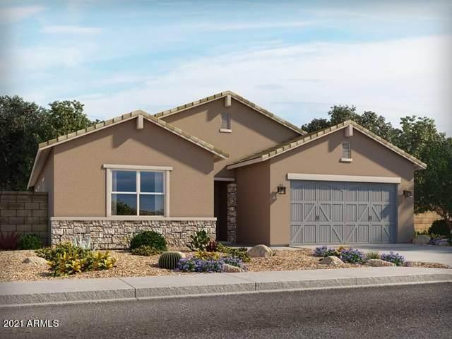 18235 W College Drive, Goodyear, AZ 85395 (MLS #6307884) :: Elite Home Advisors