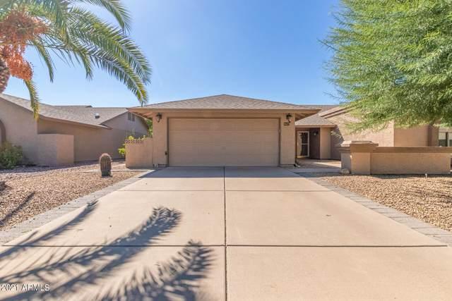 9627 W Kimberly Way, Peoria, AZ 85382 (MLS #6307886) :: West USA Realty