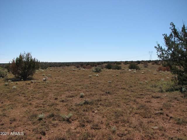 Lot 132 Chevelon Canyon Ranch, Heber, AZ 85928 (MLS #6307945) :: The Newman Team