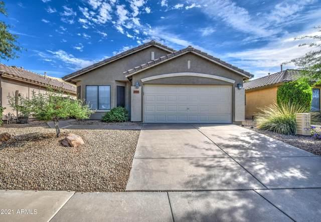 20419 N 34TH Street, Phoenix, AZ 85050 (MLS #6307961) :: The Laughton Team