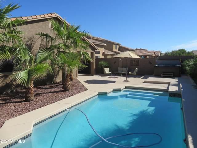 2943 W Mila Way, Queen Creek, AZ 85142 (MLS #6307963) :: Dijkstra & Co.
