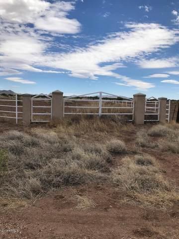 XXX E Calle Suprema Street, Douglas, AZ 85607 (MLS #6307972) :: Elite Home Advisors