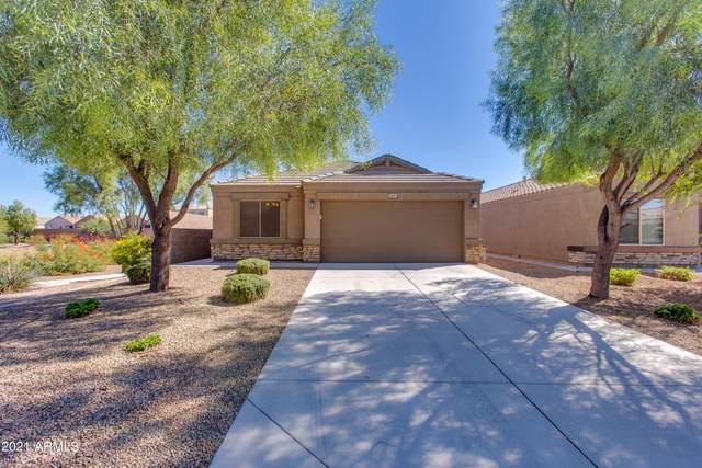 28651 N Moonstone Way, San Tan Valley, AZ 85143 (MLS #6307977) :: Elite Home Advisors