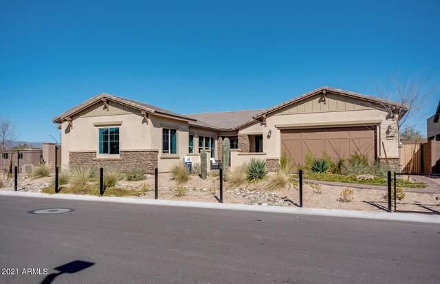 31517 N 55TH Way, Cave Creek, AZ 85331 (MLS #6308000) :: RE/MAX Desert Showcase