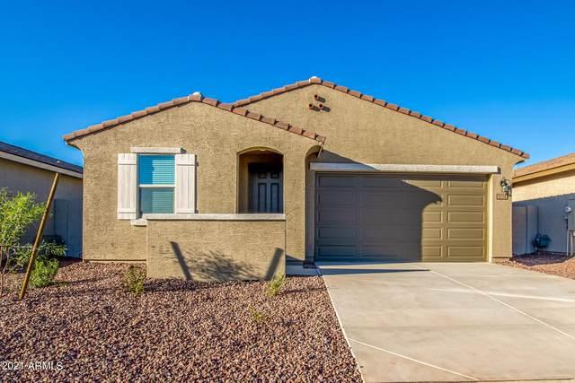 5538 W Jackalope Lane, Laveen, AZ 85339 (MLS #6308034) :: Elite Home Advisors