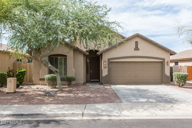 3613 E Meadowview Drive, Gilbert, AZ 85298 (MLS #6308069) :: Klaus Team Real Estate Solutions