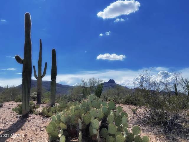 7089 W Ina Road, Tucson, AZ 85743 (MLS #6308101) :: The Copa Team | The Maricopa Real Estate Company