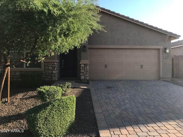231 E Salerno Way, San Tan Valley, AZ 85140 (MLS #6308104) :: Elite Home Advisors