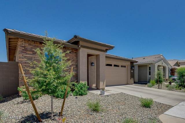 5911 N 187TH Lane, Litchfield Park, AZ 85340 (MLS #6308118) :: The Bole Group | eXp Realty