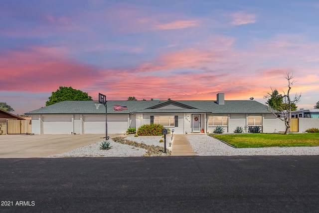 6612 W Robert E Lee Street, Glendale, AZ 85308 (MLS #6308141) :: The Property Partners at eXp Realty