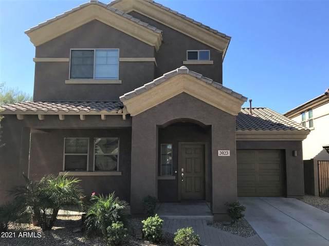 3923 E Branham Lane, Phoenix, AZ 85042 (MLS #6308175) :: The Laughton Team