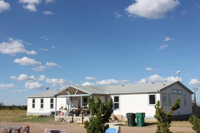7101 S Dos Amigos, Hereford, AZ 85615 (MLS #6308220) :: The Newman Team
