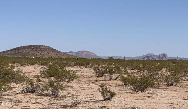 0 E Arizona Farms 7D Road, Florence, AZ 85132 (MLS #6308228) :: Fred Delgado Real Estate Group