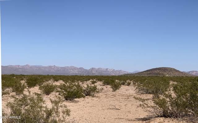 0 E Arizona Farms 7E Road, Florence, AZ 85132 (MLS #6308229) :: Fred Delgado Real Estate Group