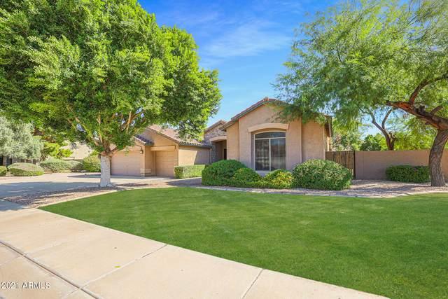 6904 W Josac Street, Glendale, AZ 85308 (MLS #6308248) :: Fred Delgado Real Estate Group