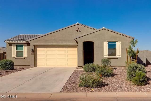 7262 E Mallard Court, San Tan Valley, AZ 85143 (MLS #6308251) :: Elite Home Advisors