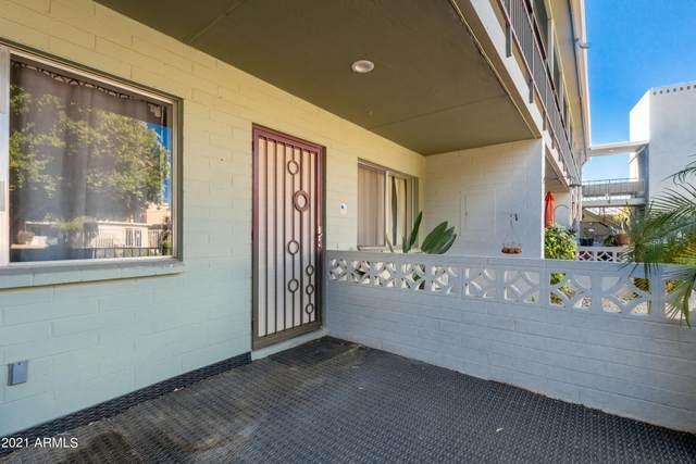 1702 W Tuckey Lane #115, Phoenix, AZ 85015 (MLS #6308300) :: Elite Home Advisors