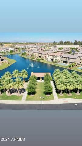 4252 S Barberry Drive, Chandler, AZ 85248 (MLS #6308302) :: Nate Martinez Team