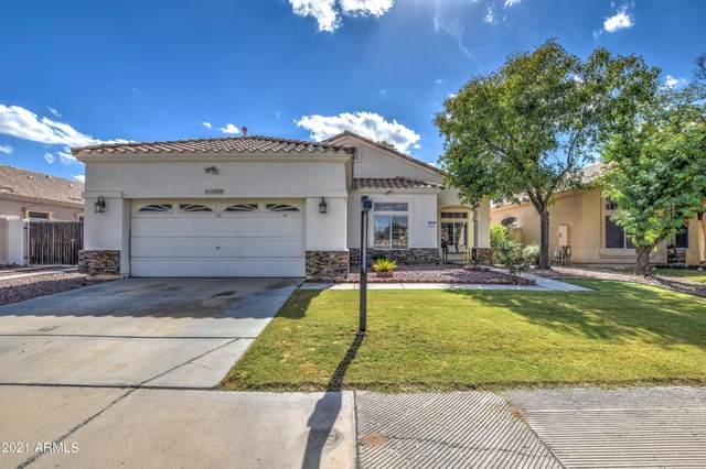 10307 W Montebello Avenue, Glendale, AZ 85307 (MLS #6308310) :: Elite Home Advisors
