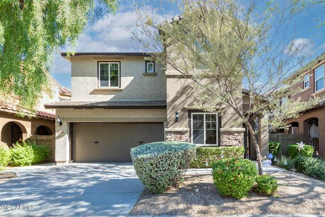 3932 E Half Hitch Place, Phoenix, AZ 85050 (MLS #6308332) :: Maison DeBlanc Real Estate