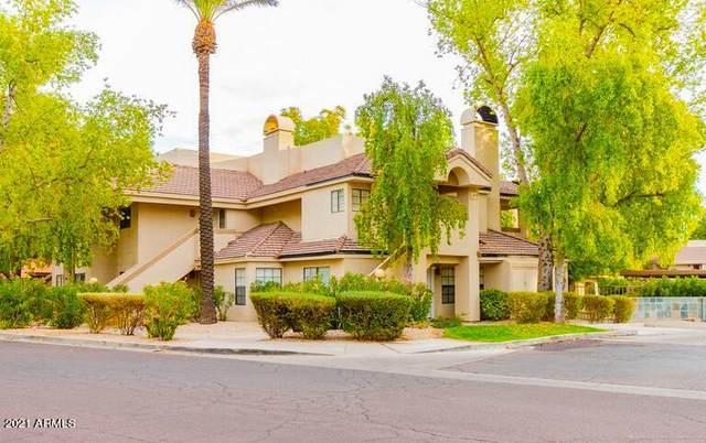 6885 E Cochise Road #143, Paradise Valley, AZ 85253 (MLS #6308344) :: The Luna Team