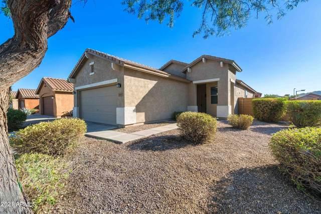 2413 W Gold Dust Avenue, Queen Creek, AZ 85142 (MLS #6308350) :: Dijkstra & Co.