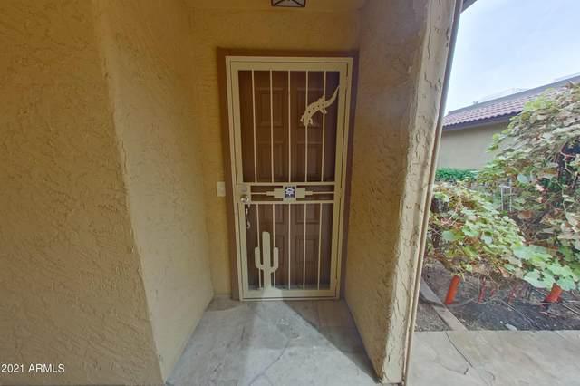 12025 S Potomac Street, Phoenix, AZ 85044 (MLS #6308379) :: The Garcia Group