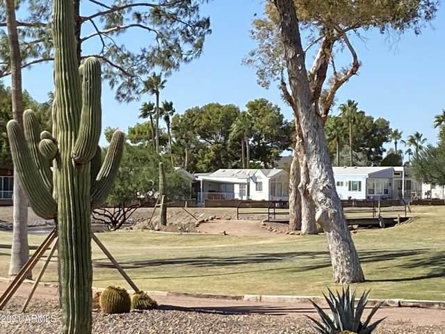 2321 W Pomo Avenue, Apache Junction, AZ 85119 (MLS #6308442) :: Elite Home Advisors