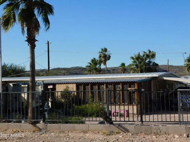 164 W Morris Drive, Queen Valley, AZ 85118 (MLS #6308446) :: The Laughton Team