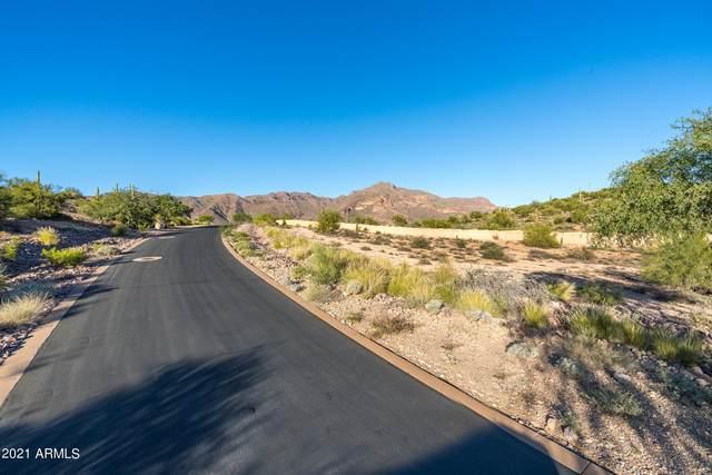 3229 S Petroglyph Trail, Gold Canyon, AZ 85118 (MLS #6308474) :: D & R Realty LLC