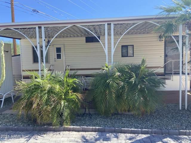 1180 S Kiowa Circle, Apache Junction, AZ 85119 (MLS #6308483) :: Elite Home Advisors