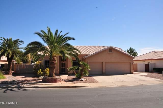 61 S Marin Drive, Gilbert, AZ 85296 (MLS #6308486) :: Elite Home Advisors