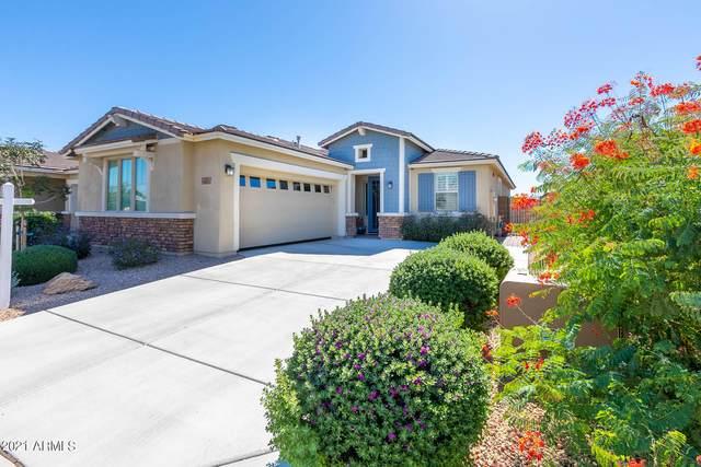 14575 W Pasadena Avenue, Litchfield Park, AZ 85340 (MLS #6308495) :: The Bole Group | eXp Realty