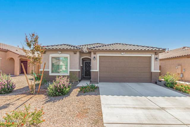25959 W Vista North Drive, Buckeye, AZ 85396 (MLS #6308499) :: Fred Delgado Real Estate Group