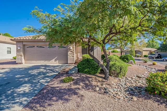 15654 W Carmen Drive, Surprise, AZ 85374 (MLS #6308500) :: Fred Delgado Real Estate Group