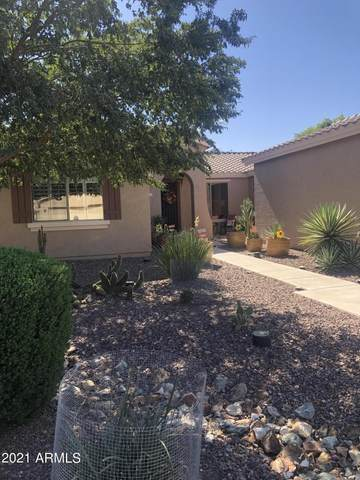 42967 W Whimsical Drive, Maricopa, AZ 85138 (MLS #6308506) :: Dijkstra & Co.