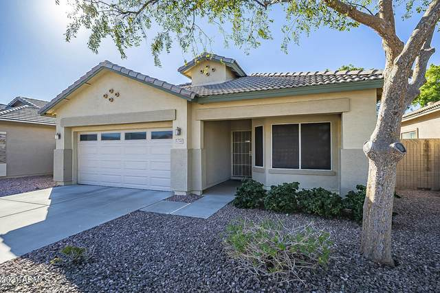 12549 W Jefferson Street, Avondale, AZ 85323 (MLS #6308515) :: Elite Home Advisors