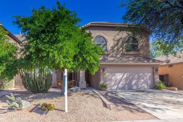 26213 N 47TH Place, Phoenix, AZ 85050 (MLS #6308520) :: The Laughton Team