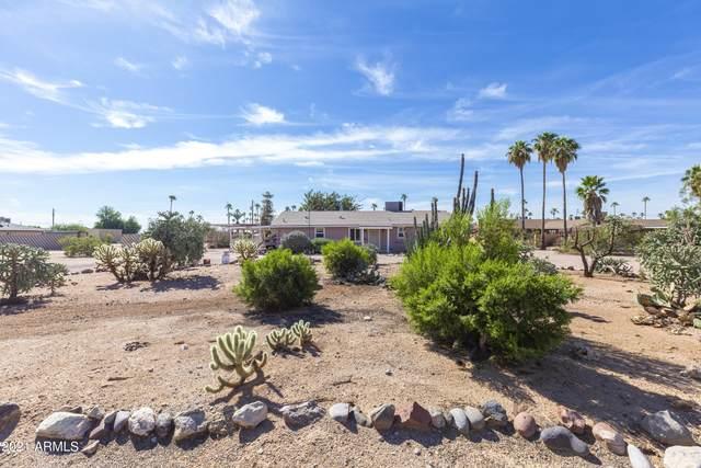 10611 E Boulder Drive, Apache Junction, AZ 85120 (MLS #6308522) :: Synergy Real Estate Partners