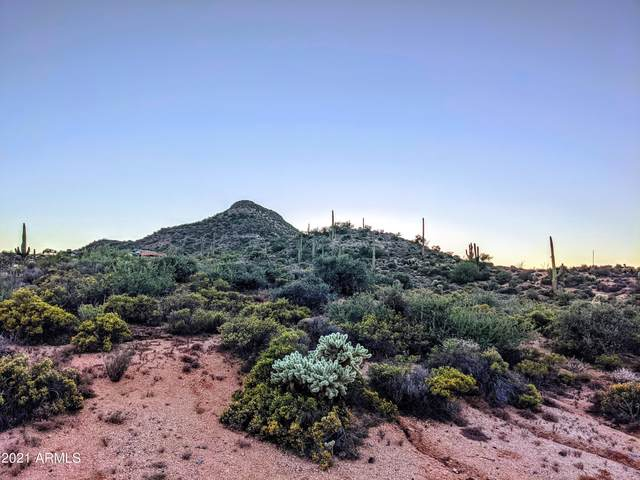 9721 E Larry Hughes Drive, Scottsdale, AZ 85262 (MLS #6308533) :: The Daniel Montez Real Estate Group