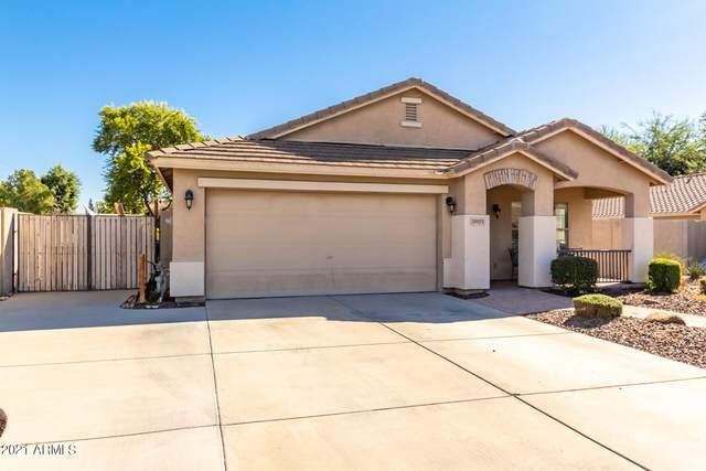 39121 N Parisi Lane, San Tan Valley, AZ 85140 (MLS #6308551) :: Klaus Team Real Estate Solutions