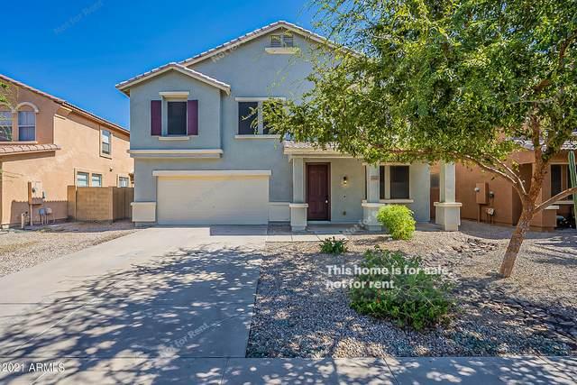 19131 N Miller Way, Maricopa, AZ 85139 (MLS #6308573) :: My Home Group