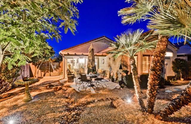 15897 W Desert Meadow Drive, Surprise, AZ 85374 (MLS #6308589) :: West USA Realty