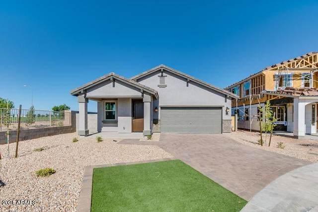 2815 S 95TH Drive, Tolleson, AZ 85353 (MLS #6308612) :: Hurtado Homes Group