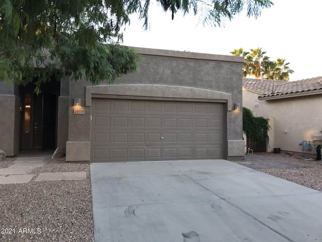 29954 N Little Leaf Drive, San Tan Valley, AZ 85143 (MLS #6308635) :: My Home Group