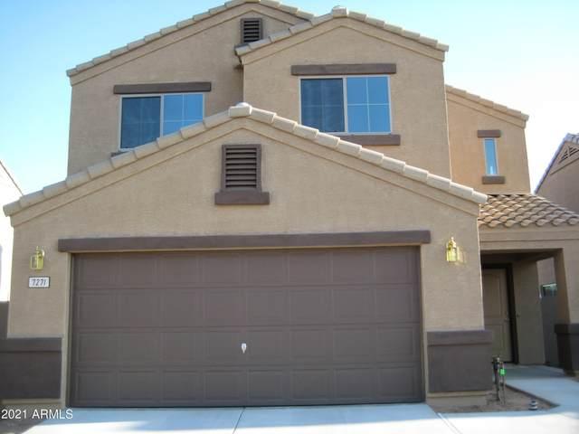 7271 W Cactus Wren Drive, Glendale, AZ 85303 (MLS #6308643) :: Arizona Home Group