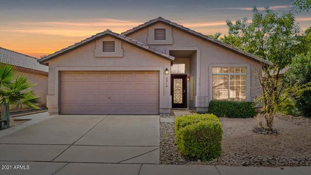 2315 E Aire Libre Avenue, Phoenix, AZ 85022 (MLS #6308649) :: Openshaw Real Estate Group in partnership with The Jesse Herfel Real Estate Group